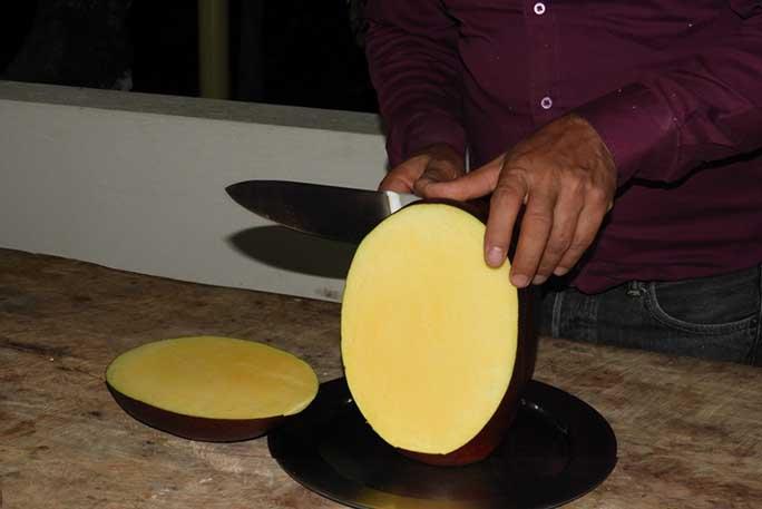 world biggest mango