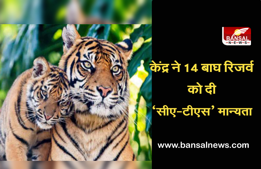 International Tiger Day: 'CA-TS' recognition to 14 tiger reserves of the country